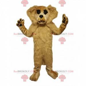 Béžový psí maskot. Béžový kostým pro psa - Redbrokoly.com