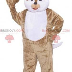 Tic nebo Tac hnědý a bílý veverka maskot - Redbrokoly.com
