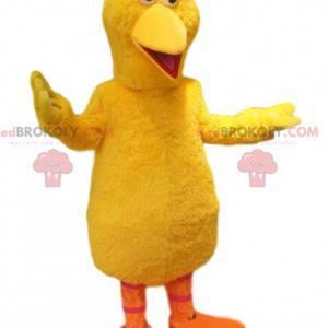 Mascote de pato amarelo muito cômico. Fantasia de pato -