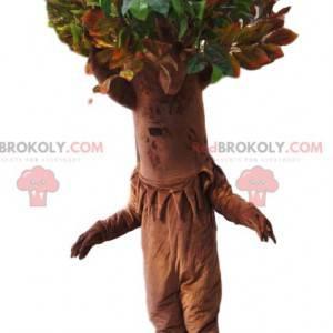 Mascota del árbol con una magnífica corona verde. Traje de