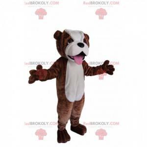 Braunes und weißes Bulldoggenmaskottchen. Bulldogge Kostüm -