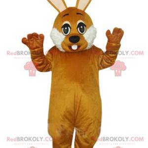 Very cute brown and white rabbit mascot. Bunny costume -
