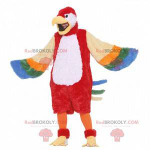 Mascote papagaio gigante multicolorido - Redbrokoly.com