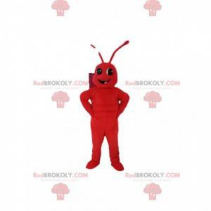 Mascote da formiga vermelha. Fantasia de formiga -