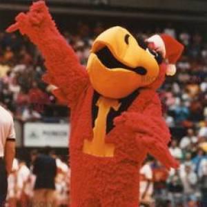Giant black and yellow red bird mascot - Redbrokoly.com