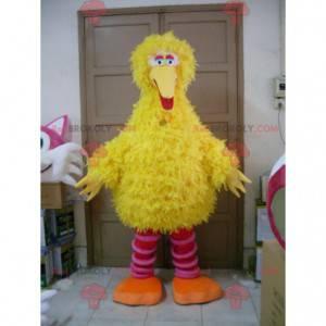 All hairy yellow and pink bird mascot - Redbrokoly.com