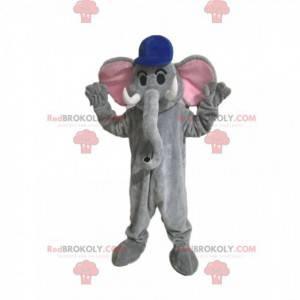 Graues Elefantenmaskottchen mit einer blauen Kappe -