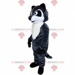 Mascota de mapache con ojos intensos y un hermoso pelaje. -