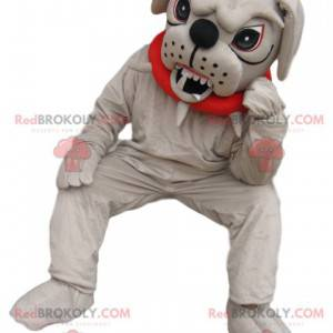 Very aggressive bull-dog mascot with a red collar -