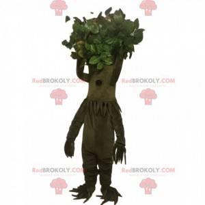 Maskotka drzewo khaki z ładną koroną - Redbrokoly.com