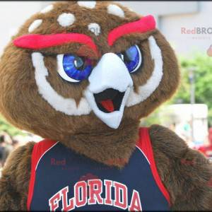 Brown and white owl mascot with red eyebrows - Redbrokoly.com