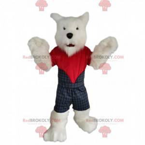 Maskot Westie, skotský pes, se skotským oblečením! -