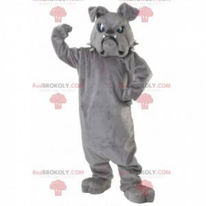 Gray bulldog mascot with blue eyes - Redbrokoly.com