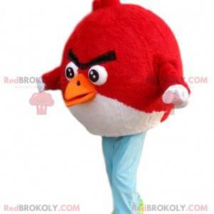 Angry Bird mascot red and black - Redbrokoly.com