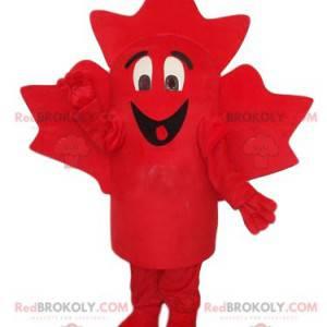 Very smiling red maple leaf mascot - Redbrokoly.com