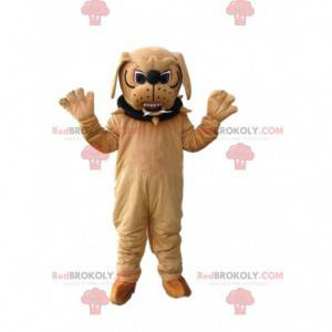 Aggressive beige bull-dog mascot with a collar - Redbrokoly.com