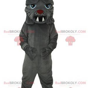 Gray bull dog mascot with big teeth - Redbrokoly.com