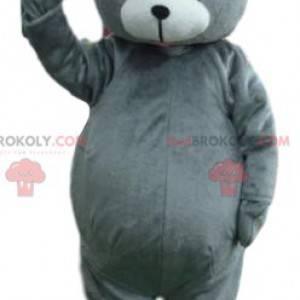 Grau Bär Maskottchen berühren. Teddybär Kostüm - Redbrokoly.com