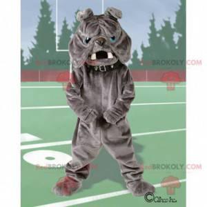 Graues Bulldoggenmaskottchen mit blauen Augen - Redbrokoly.com