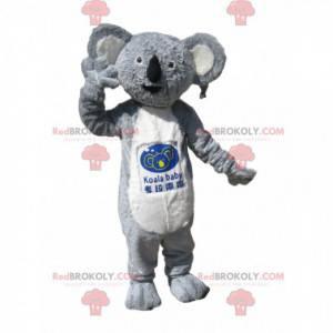 Mascote coala cinza e branco com um lindo casaco -