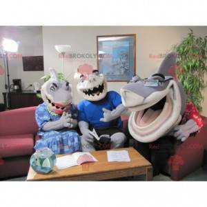 3 very expressive and funny gray and white shark mascots -
