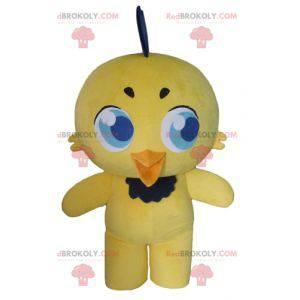 Maskot žlutá a černá kočka žlutého ptáka kanárek -