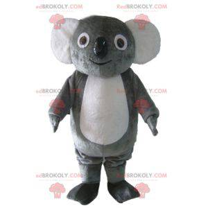 Weiches und lustiges graues und weißes Koalamaskottchen -