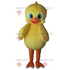 Yellow and orange chick mascot with blue eyes - Redbrokoly.com