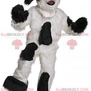 Černý a bílý pes maskot všechny chlupaté - Redbrokoly.com