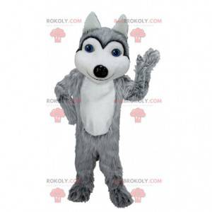 Grå og hvit ulvemaskot med blå øyne - Redbrokoly.com