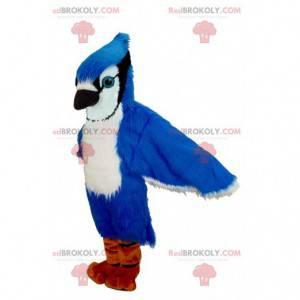 Blauer Jay des blauen weißen und schwarzen Vogelmaskottchens -