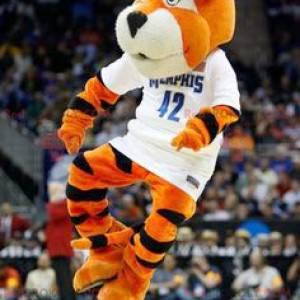 Černá a bílá oranžová tygr maskot - Redbrokoly.com