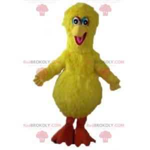 Velký pták maskot slavný žlutý pták Sezamové ulice -