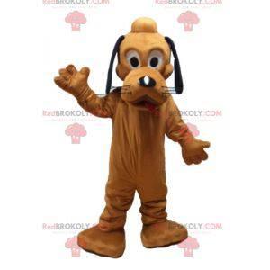 Pluto maskot berømt orange hund fra Disneys Pluto -