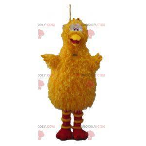 Grande uccello mascotte famoso uccello giallo di Sesame Street