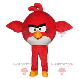 Maskot velký červený a bílý pták ze hry Angry Birds -