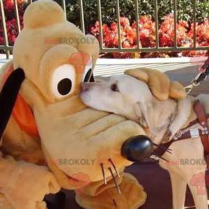 Myckey Mouse berømte hund Pluto maskot - Redbrokoly.com