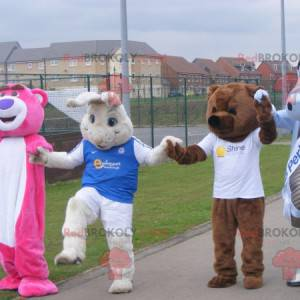 4 mascots two bears a white rabbit and a dragon - Redbrokoly.com