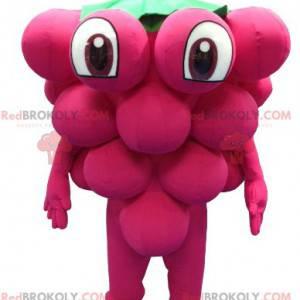 Giant bunch of grapes mascot - Redbrokoly.com