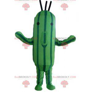 Two-tone green zucchini cucumber mascot - Redbrokoly.com