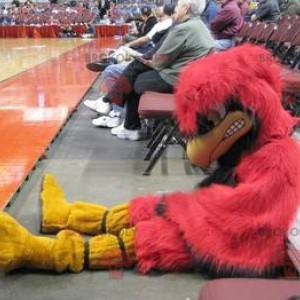 Mascot big red and yellow bird looking nasty - Redbrokoly.com