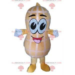 Giant peanut mascot. Peanut mascot - Redbrokoly.com