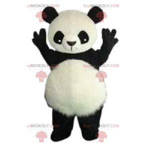 Mascota de un Panda blanco y negro y sus hermosas orejas -