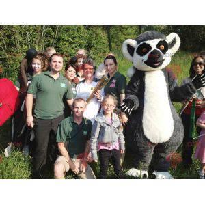 Maskot šedý černobílý lemur velmi sladký a roztomilý -