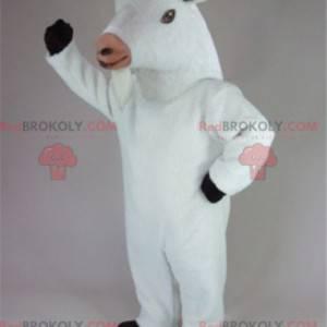 Cabra cabra mascote cabra cabra branca - Redbrokoly.com