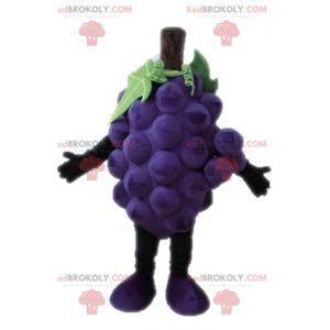 Mascot giant bunch of grapes. Fruit mascot - Redbrokoly.com