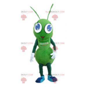 Riesenmaskottchen mit grünen Ameisen. Grünes