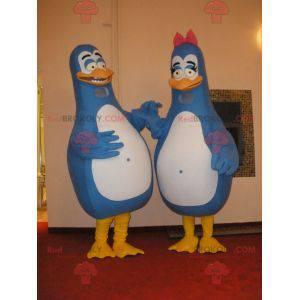 2 maskoti modrých a bílých tučňáků. Pár maskotů - Redbrokoly.com
