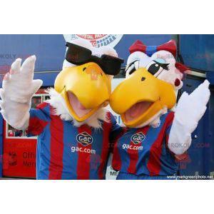 2 maskoti ptáků Racek ve sportovním oblečení - Redbrokoly.com