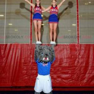 Gray bulldog dog mascot in sportswear - Redbrokoly.com